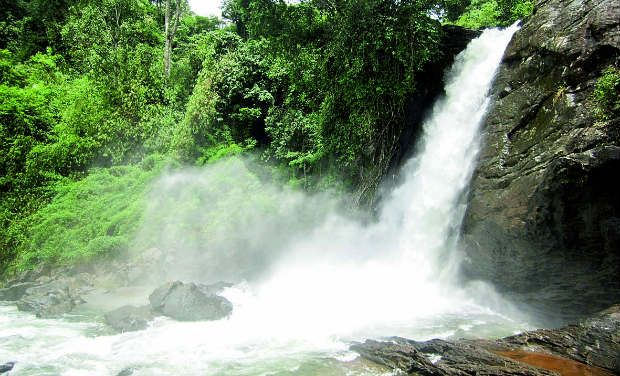 Bangalore –Wayanad- Coorg College/Study Tour