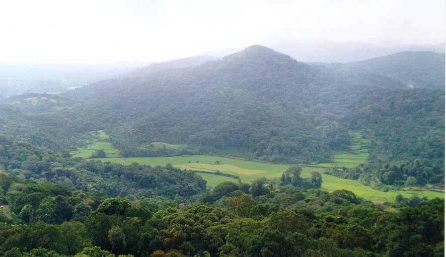 Bangalore – Mysore –Wayanad- Coorg Students Group Tour