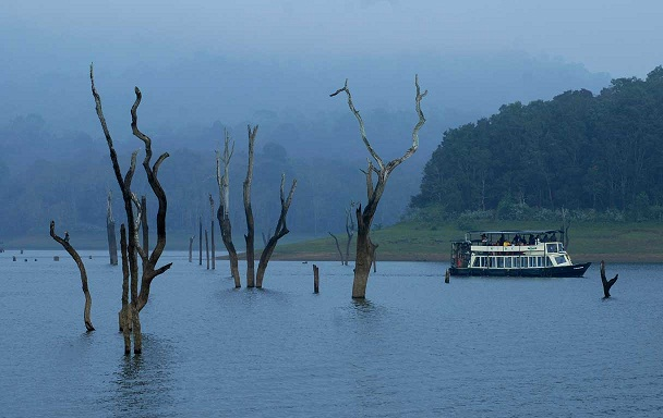 Munnar- Thekkady Students Tour Package