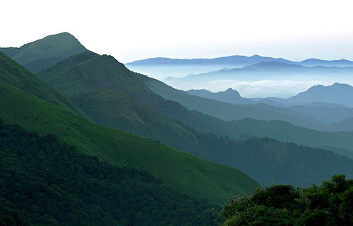 Wayanad-Ooty Study Tour Package from Cochin