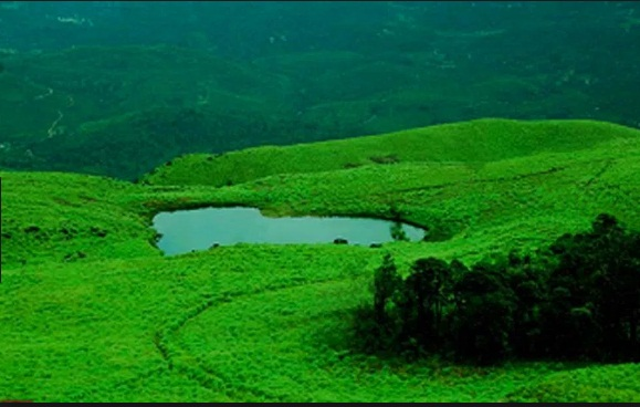 Munnar-Wayanad-Students Tour Package